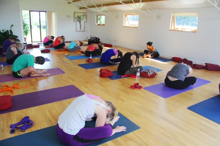 Introduction to Yoga: A Four Week Course